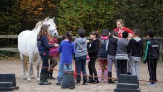Breaking the Ice - Rotary Club Hilversum International