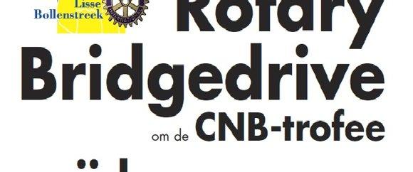Bridgedrive 2014